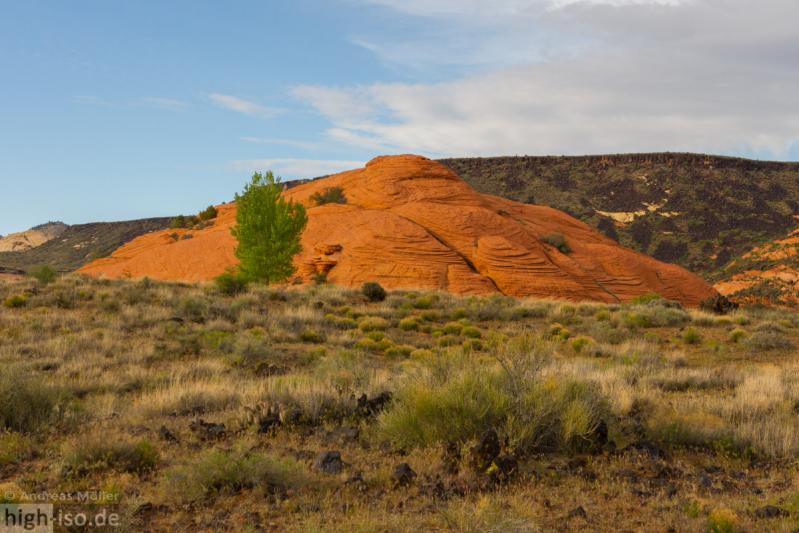 Rote Felsen im Snow Canyon